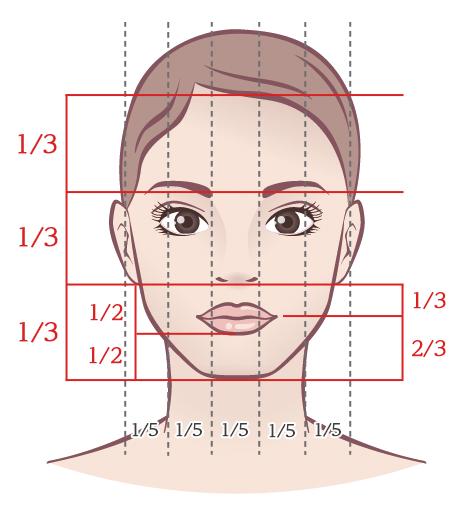 横の顔黄金比率